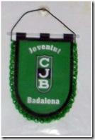 BANDERIN-Penya
